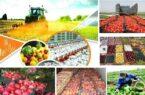 ضرورت توجه ویژه به توسعه گلستان در بخش کشاورزی