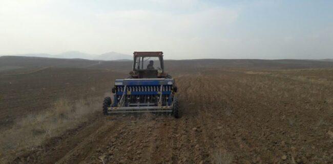 قرار گرفتن ۷۰ هزار هکتار اراضی دیم گلستان در طرح «جهش تولید»
